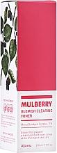 Kup Tonik oczyszczający do skóry problematycznej - A'Pieu Mulberry Blemish Clearing