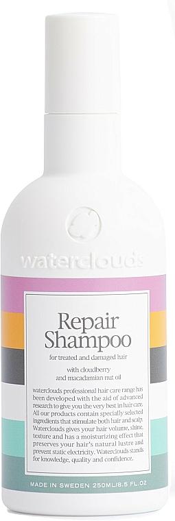 Szampon do włosów suchych i zniszczonych - Waterclouds Repair Shampoo — фото N1