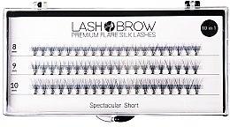 Kup Jedwabne kępki rzęs - Lash Brow Premium Flare Silk Lashes Spectacular Short