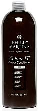 Kup Tonująca odżywka do włosów - Philip Martin's Color It Color Conditioner