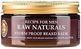 Kup Balsam do stylizacji brody - Recipe For Men RAW Naturals Storm Proof Beard Balm