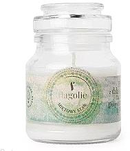 Kup Świeca zapachowa w słoiku Miętowy staw - Flagolie Scented Candle Boho Mint Pond