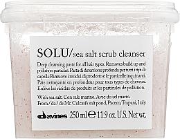 Kup Oczyszczający peeling z solą morską do skóry głowy - Davines Solu Sea Salt Scrub Cleanser