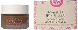 Kup Organiczny peeling do ust - Whamisa Organic Flowers Deep Rich Lip Scrub
