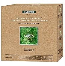 Kup Zestaw do włosów Pielęgnacja detoksykująca i ochronna przeciw zanieczyszczeniom Mięta - Klorane Aquatic Mint (shm 200 ml + hair/balm 150 ml)