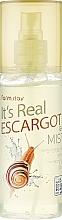 Kup Żelowa mgiełka do twarzy z mucyną ślimaka - FarmStay It's Real Escargot Gel Mist