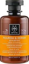 Kup Szampon rewitalizujący Oliwa z oliwek i miód - Apivita Nourish & Repair Shampoo Olive & Honey