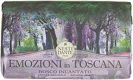 Kup Naturalne mydło w kostce Zaczarowany las - Nesti Dante Emozioni in Toscana Bosco Incantato
