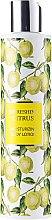 Kup Orzeźwiający balsam cytrusowy do ciała - Vivian Gray Refreshing Citrus Body Lotion