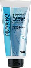 Kup Szampon do włosów kręconych Oliwa z oliwek - Brelil Numero Elasticizing Shampoo