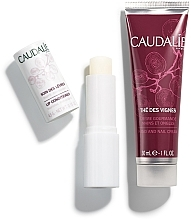 Zestaw - Caudalie The Des Vignes (lip/balm 4,5 g + h/cr 30 ml) — фото N2