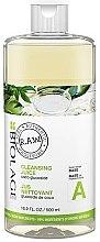 Kup Baza oczyszczająca do przygotowania kosmetyków - Biolage R.A.W. Fresh Recipes Cleansing Juice Base