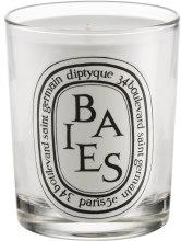 Kup Świeca zapachowa - Diptyque Baies Candle