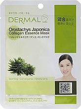Kup Kolagenowa esencjonalna maseczka do twarzy Rojnikowiec - Dermal Orostachys Japonica Collagen Essence Mask