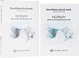 Kup Maseczka w płachcie z bionanocelulozy do twarzy głęboko nawilżająca - Calluna Medica Norway