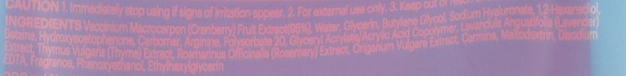 Odświeżająco-rewitalizujący żel kojący do ciała Żurawina - Skin79 Real Fruit Cranberry Soothing Gel — фото N3
