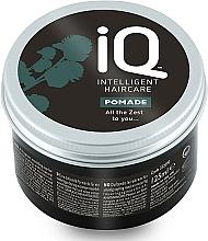 Kup Pomada do pielęgnacji włosów - IQ Intelligent Haircare Pomade
