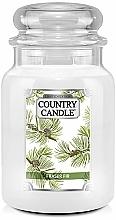 Kup Świeca zapachowa - Country Candle Fraser Fir