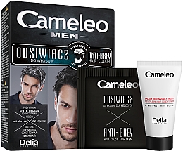 Kup Odsiwiacz do włosów czarnych i ciemnobrązowych dla mężczyzn - Delia Cameleo Men