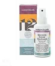 Kup Intensywnie regenerująca odżywka do włosów w sprayu - Waterclouds Intesive Repair Treatment