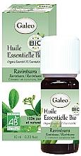 Kup Olejek eteryczny z cynamonowca kamforowego - Galeo Organic Essential Oil Ravintsara