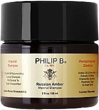 Kup Szampon do włosów - Philip B Russian Amber Imperial Shampoo
