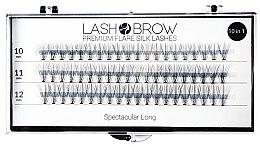 Kup Jedwabne kępki rzęs - Lash Brow Premium Flare Silk Lashes Spectacular Long