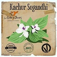Kup Proszek do włosów Kachur Sugandhi - Le Erbe di Janas Kachur Sugandhi Powder