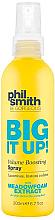 Kup Spray zwiększający objętość włosów - Phil Smith Be Gorgeous Big It Up Volume Boosting Spray