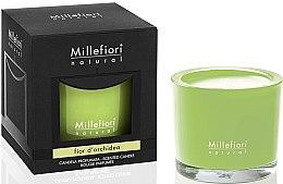 Kup Świeca zapachowa - Millefiori Milano Natural Candle Fior d'Orchidea