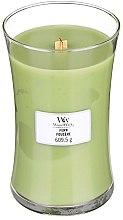 Kup Świeca zapachowa w szkle - WoodWick Hourglass Candle Fern