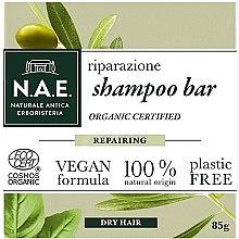 Kup Szampon w kostce do włosów suchych - N.A.E. Repairing Shampoo Bar