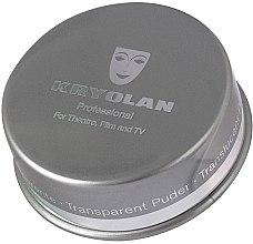 Kup Półprzezroczysty puder do utrwalania makijażu - Kryolan Translucent Powder