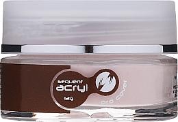 Kup Akrylowy lakier do paznokci - Silcare Sequent Acryl