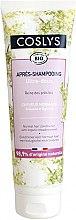 Kup Odżywka z organiczną wiązówką błotną do włosów normalnych - Coslys Normal Hair Conditioner With Organic Meadowsweet