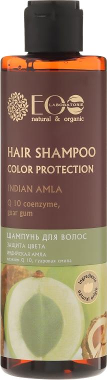 Szampon chroniący kolor włosów farbowanych Indyjska amla - ECO Laboratorie Color Protection Hair Shampoo