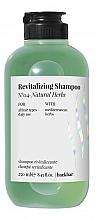 Kup Szampon do włosów Naturalne zioła - Farmavita Back Bar No4 Revitalizing Shampoo Natural Herbs