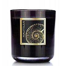 Kup Świeca zapachowa w szklance - Kringle Candle Nautilus Black Jar Candle