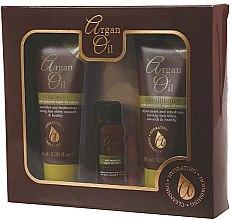 Kup Zestaw do pielęgnacji włosów Olej arganowy - Xpel Marketing Ltd Argan Oil (shm 100 ml + cond 100 ml + oil 30 ml)