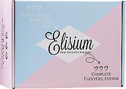 Zestaw - Elisium Diamond Maxi (liquid/5*15ml + powder/3*23g) — фото N1