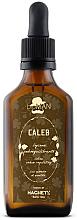 Kup Balsam do skóry głowy regulujący wydzielanie sebum - BioMan Caleb Sebum Balancing Lotion