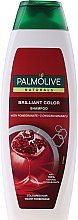 Kup Szampon do włosów farbowanych Granat i migdał - Palmolive Naturals Brilliant Color Shampoo
