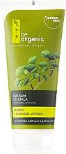 Kup Nawilżający balsam do ciała Szałwia i miłorząb japoński - Be Organic