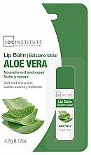 Kup Balsam do ust Aloes - IDC Institute Lip Balm Aloe Vera