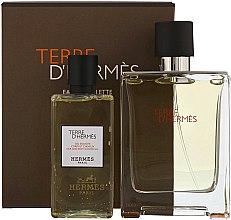 Kup Hermes Terre d'Hermes - Zestaw (edt 100 ml + sh/gel 80 ml)