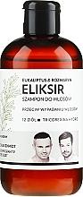 Kup Szampon-eliksir przeciw wypadaniu włosów Ekaliptus i rozmaryn - WS Academy Eukaliptus & Rozmaryn Elixir Wash