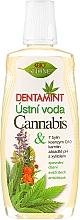 Kup Płyn do płukania jamy ustnej z olejem konopnym - Bione Cosmetics Dentamint Mouthwash Cannabis