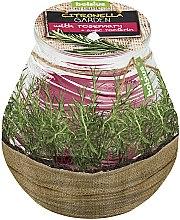 "Kup Świeca zapachowa w słoiku Citronella Garden Rosemary"", 94/91 mm - Bolsius Candle"
