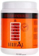 Kup Kremowa maska do włosów z ekstraktem z marchwi i siemienia lnianego - Pettenon Cosmetics Serical Carrot And Linseed Oil Cream