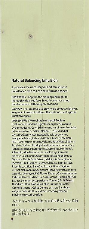 Emulsja do twarzy przywracająca równowagę skóry - The Skin House Natural Balancing Emulsion — фото N3